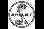 Zdjęcia Shelby
